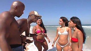 These brazilian chicks are wild