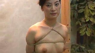 Chinese BDSM